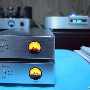 D 300 Amplifier